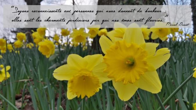 Brasser de l'air - Soyons reconnaissants aux personnes qui nous donnent du bonheur ; elles sont les charmants jardiniers par qui nos âmes sont fleuries..jpg